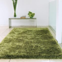 Tips to Decorate your home With wool Rugs