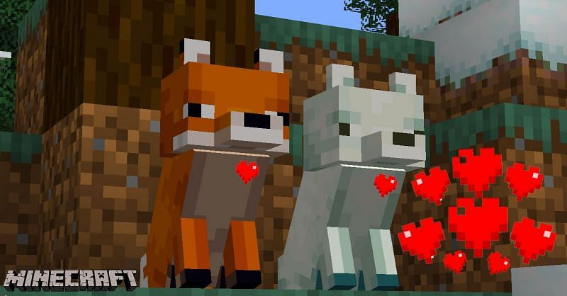 tame fox minecraft